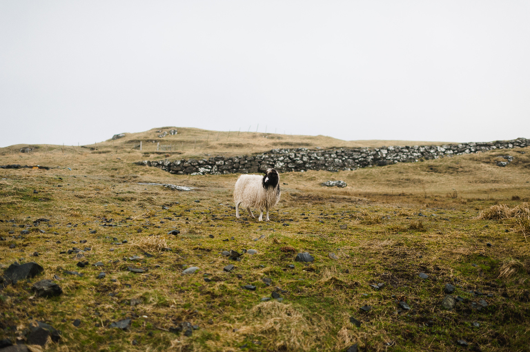 Faroe Islands Travel Photography Jenn Dave Stark 002